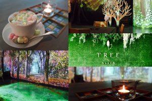 TREE by NAKED tajimi 多治見